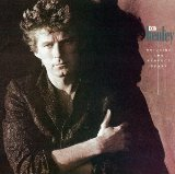 Building The Perfect Beast - Don Henley - 1984